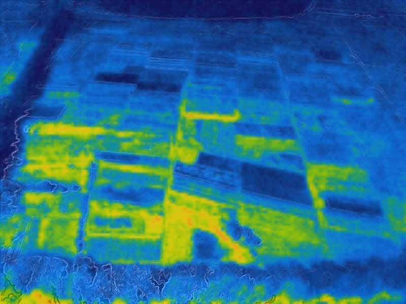 Тепловизионный снимок поля. Видна разность температур по участкам